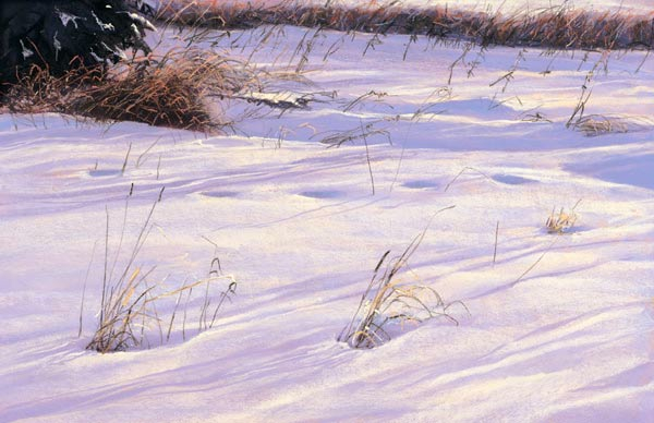 Dave Beckett Snow Shadows