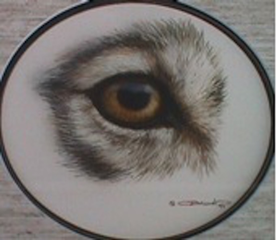 Carl Brenders The Wolf Eye