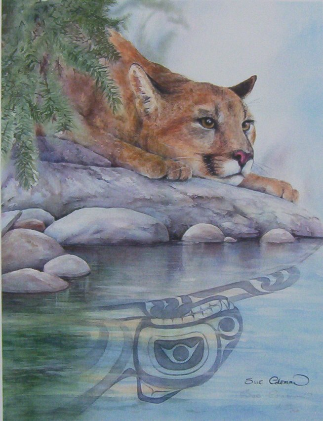 Sue Coleman Cougar reflection