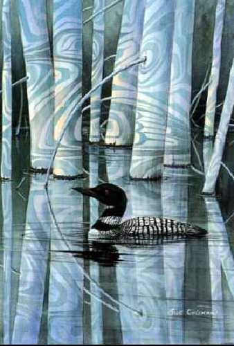 Sue Coleman Loon Shadow