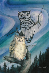 Sue Coleman Night Owl