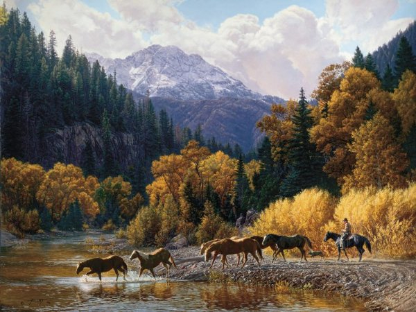 Tim Cox Rocky Mountain Paradise