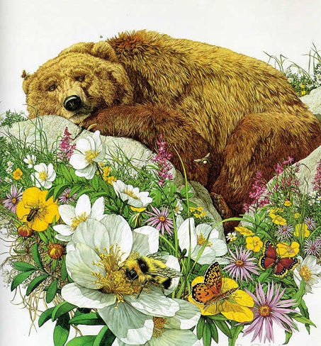 Bev Doolittle Bugged Bear