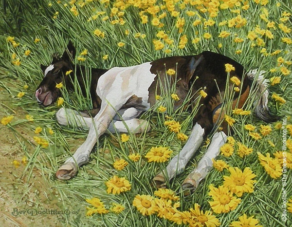 Bev Doolittle Spring Break