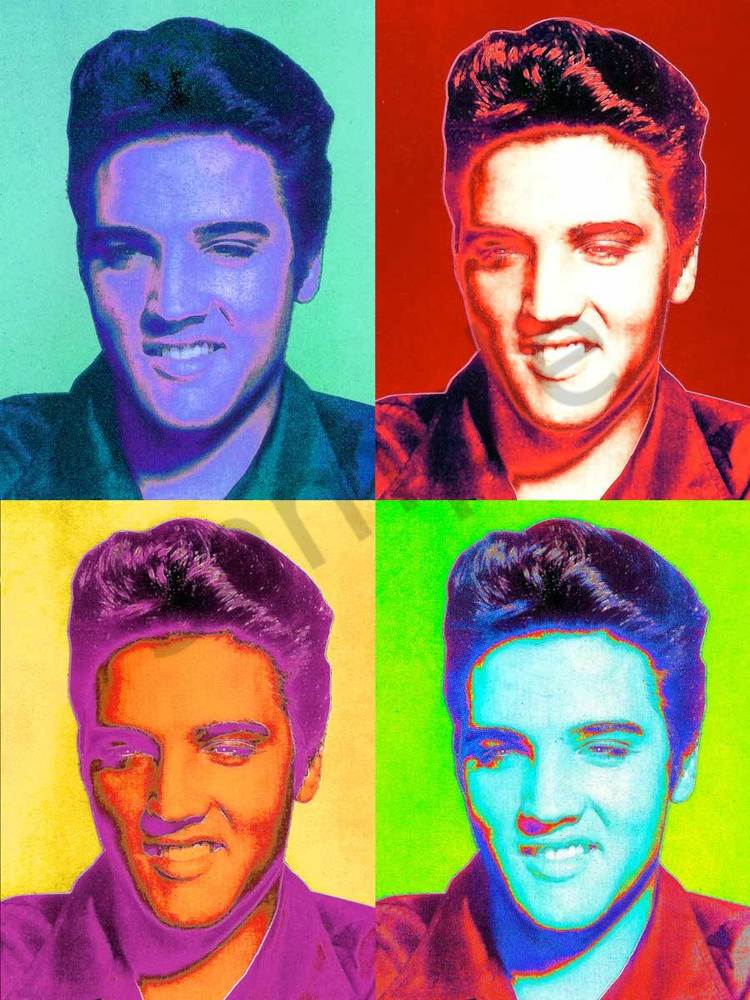 Murray Eisner Elvis 1