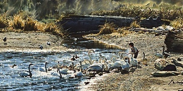 Carol Evans feeding The Swans
