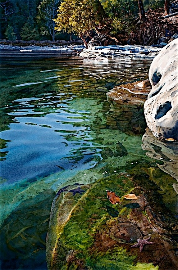 Carol Evans Intertidal Realm Giclee on Paper and Canvas