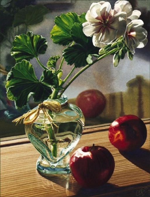 Carol Evans Geraniums and  Apples