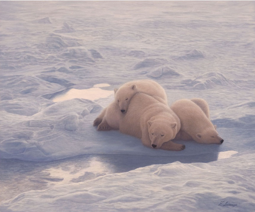 Lorenzo Fracchetti Afternoon Nap Polar Bears