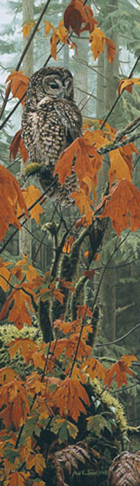 Rod Frederick Autumn Leaves