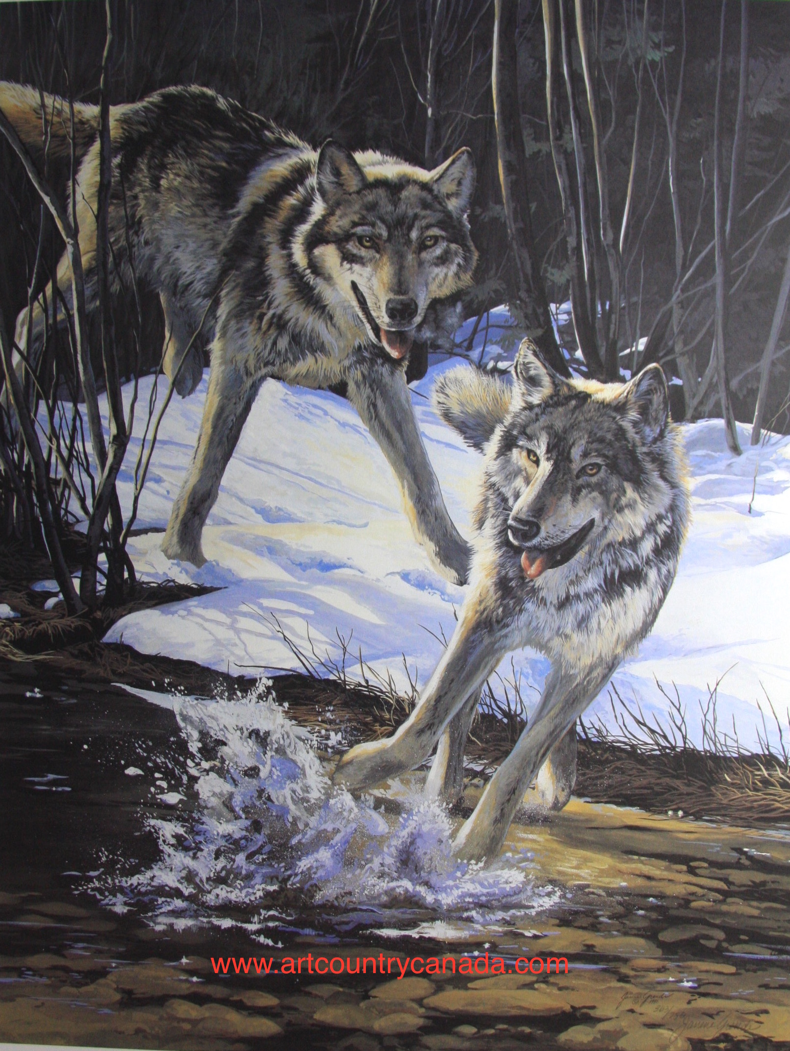 Janene Grende The Coming Of The Wolves
