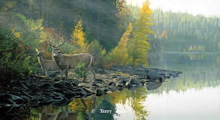 Terry Isaac Autumn Gold