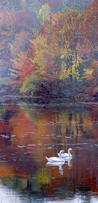 Terry Isaac Autumn Reflections