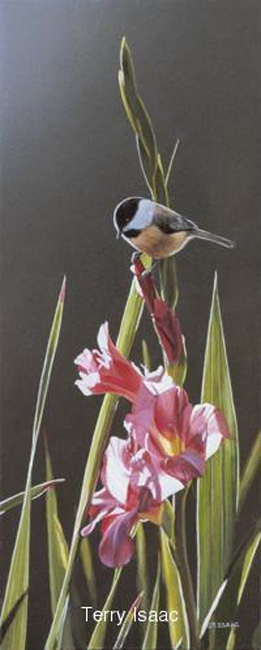 Terry Isaac Chickadee and Pink Gladiolas