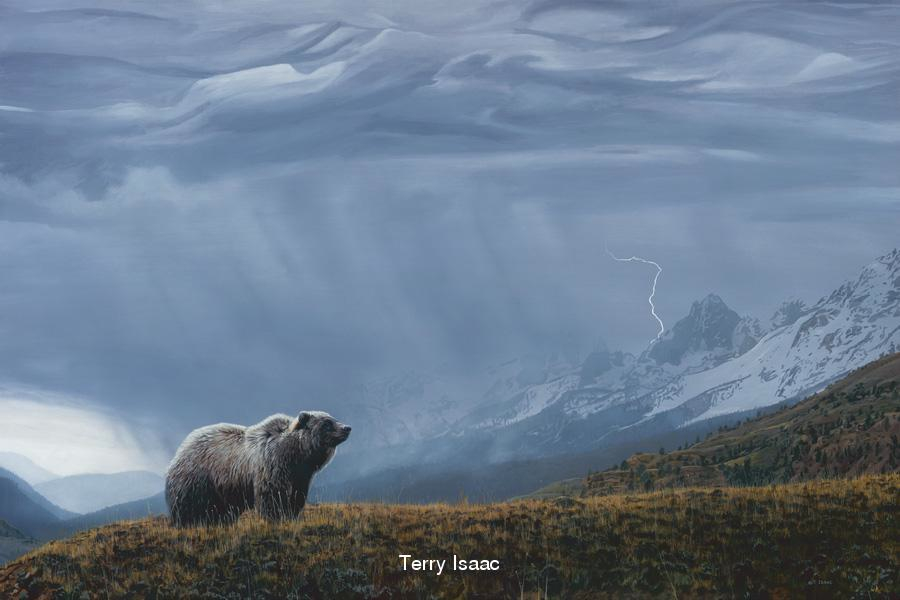 Terry Isaac Stormwatch Grizzly Bear