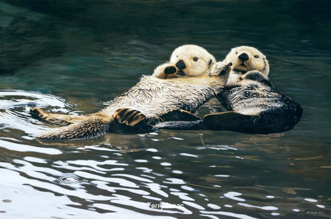 Terry Isaac Togetherness Sea Otters
