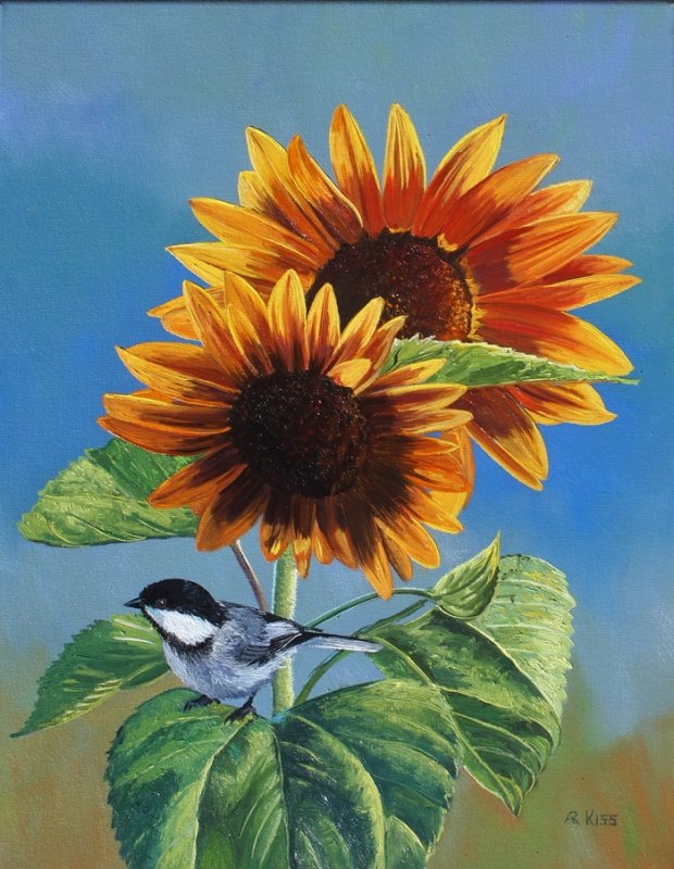 Andrew Kiss Sunflower And Chickadee