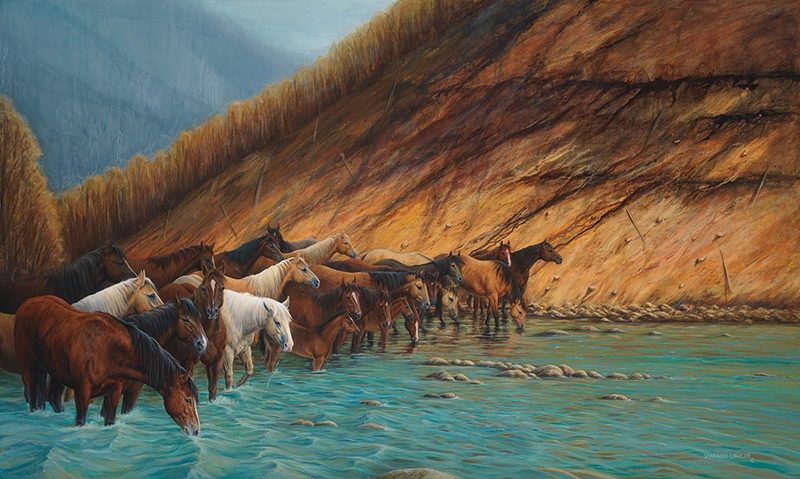 Shannon Lawlor Burnt River