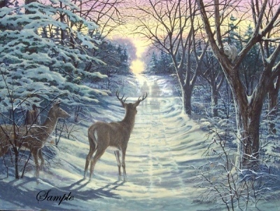 James Lumbers Winter Solstice