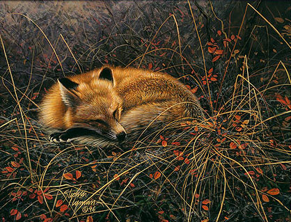 Stephen Lyman Fox Dreams