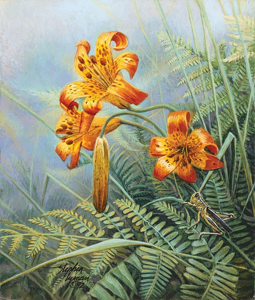 Stephen Lyman Tiger Lilies and Grasshopperu