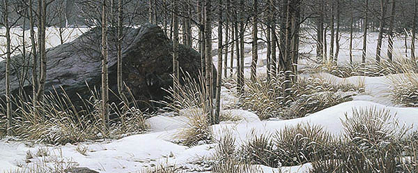 Stephen Lyman Winter Shadows