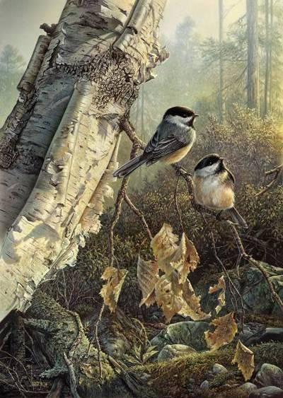 Denis Mayer Morning Charm Chickadees