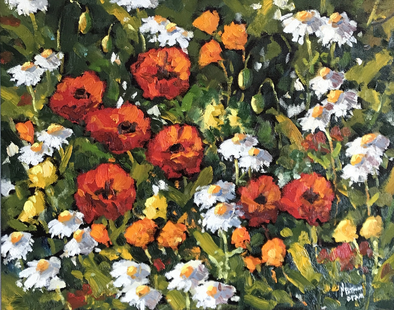 Neil Patterson Daisies and Poppies