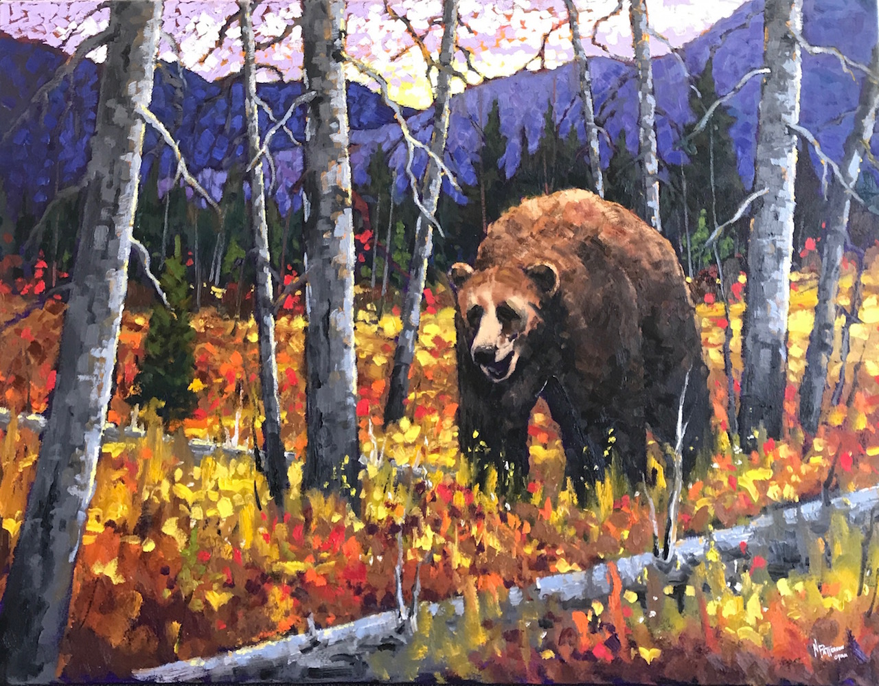 Neil Patterson Foothills Grizzly