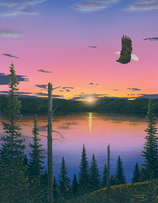 Glen Scrimshaw Spirit In The Sky bald Eagle