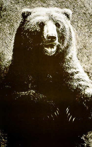 John Seerey Lester Grizzly Litho