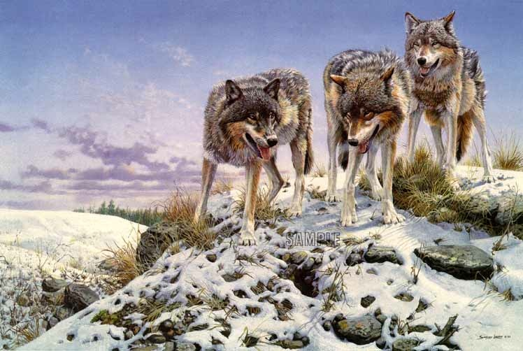 John Seerey-Lester High Ground Wolves