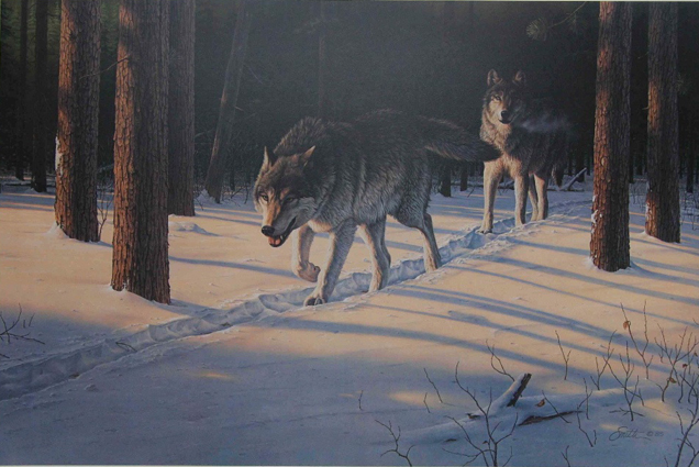 Daniel Smith Evening Quest Timber Wolves