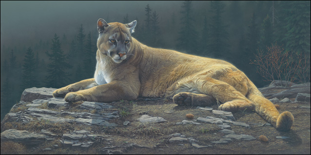 Daniel Smith Radiant Repose Cougar