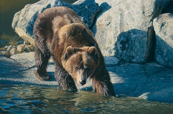 Daniel Smith Retreat From The Heat Grizzly Bear