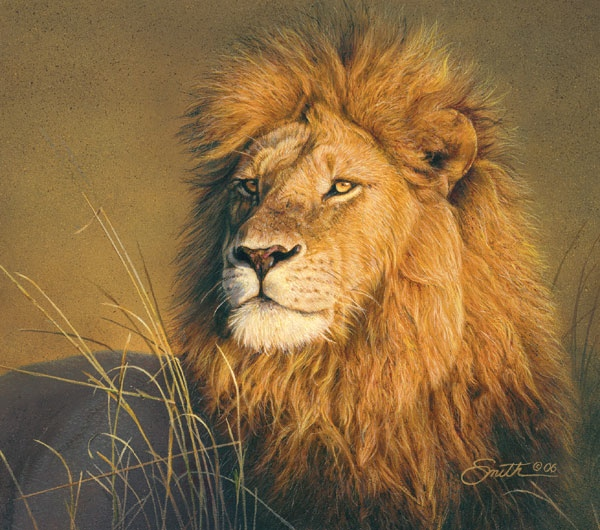 Daniel Smith The Sublime Lion