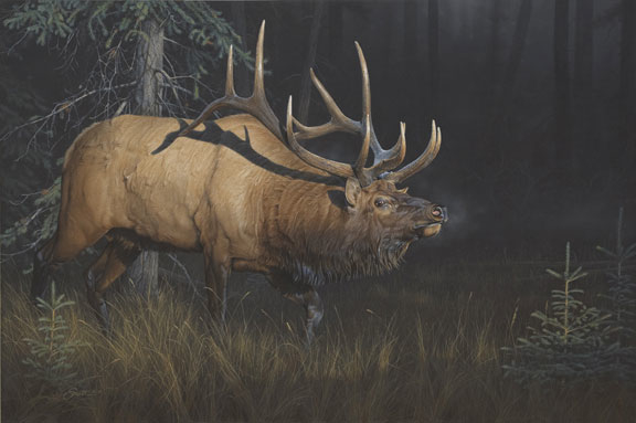 Daniel Smith Sun Struck Elk
