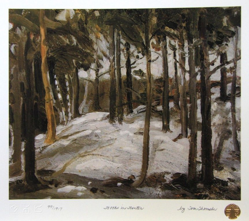 Tom Thomson Woods in Winter