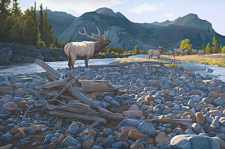 Derek Wicks September Serenade Elk