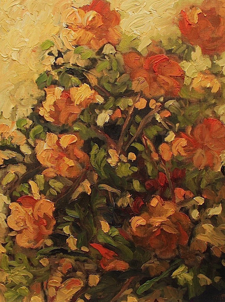 Ann Willsie Orange Begonias